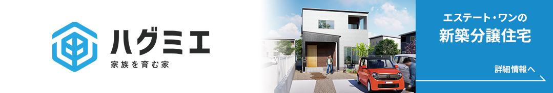 ハグミエ -家族を育む家- エステート・ワンの新築分譲住宅
